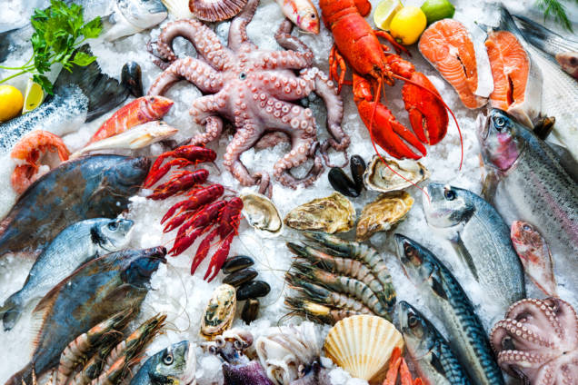 fisk och skaldjur